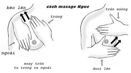 Hướng dẫn massage ngực